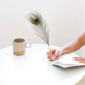 xcelsior, hay, pildspalva, pāva spalvas pildspalva